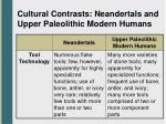 cultural contrasts neandertals and upper paleolithic modern humans