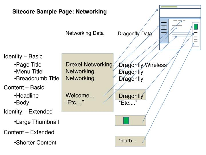 Sitecore Sample Page: Networking