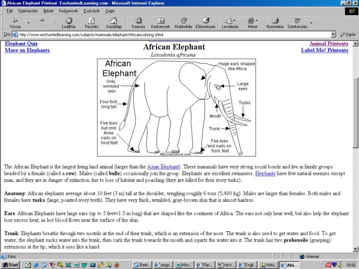 http://www.enchantedlearning.com/Dictionary.html