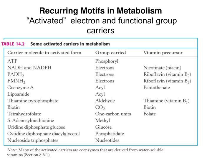 Recurring Motifs in Metabolism