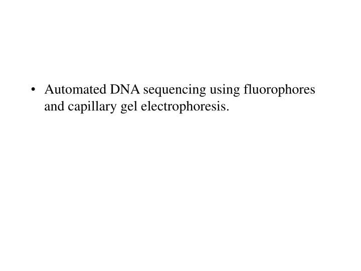 Automated DNA sequencing using fluorophores and capillary gel electrophoresis.