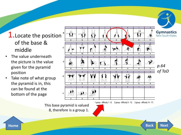 Locate the position of the base & middle