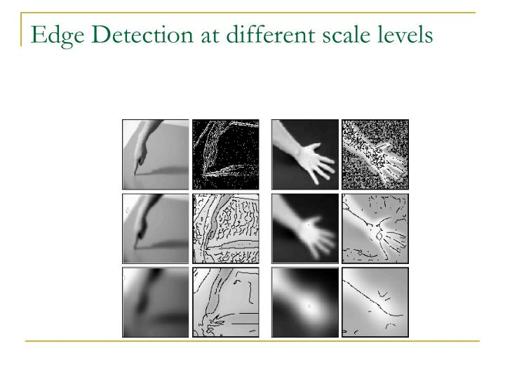 Edge Detection at different scale levels