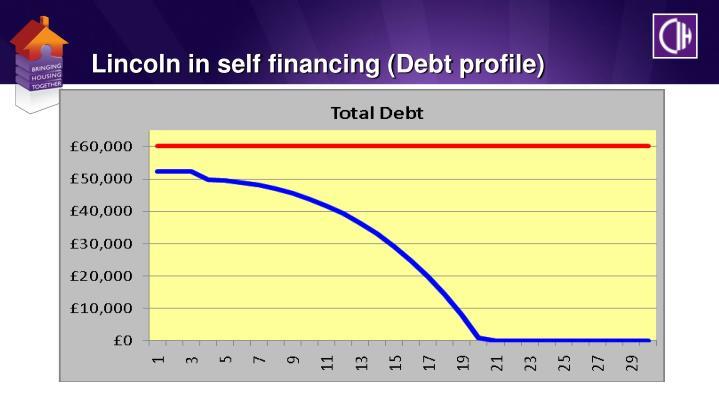 Lincoln in self financing (Debt profile)