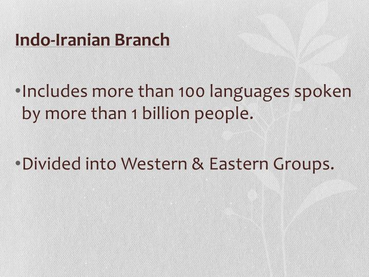 Indo-Iranian Branch