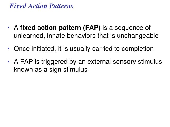 fixed action patterns n.