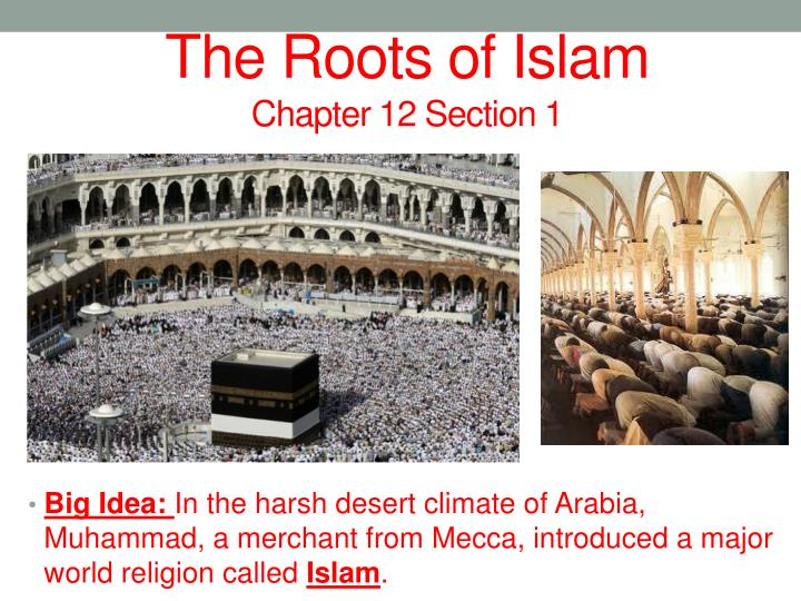 The roots of islam chapter 12 section 1