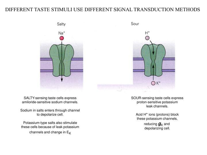 DIFFERENT TASTE STIMULI USE DIFFERENT SIGNAL TRANSDUCTION METHODS