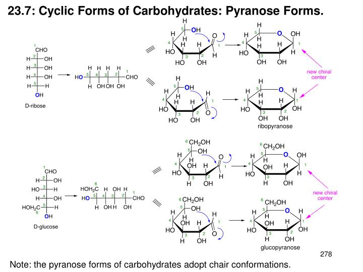 23.7: Cyclic Forms of Carbohydrates: Pyranose Forms.