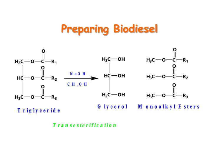 Preparing Biodiesel