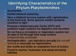 identifying characteristics of the phylum platyhelminthes