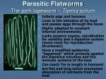 parasitic flatworms the pork tapeworm taenia solium