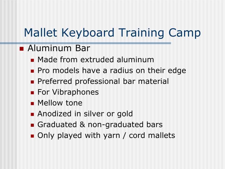 Mallet Keyboard Training Camp