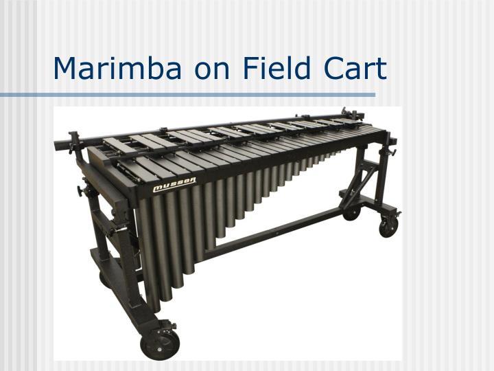 Marimba on Field Cart