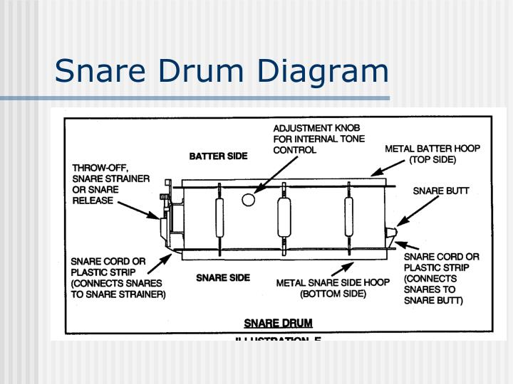 Snare Drum Diagram
