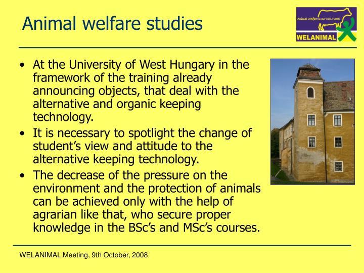 A nimal welfare studies