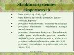 struktura system w ekspertowych