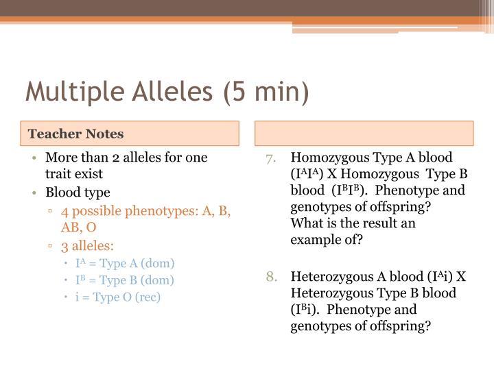 Multiple Alleles (5 min)