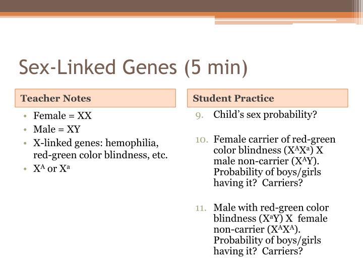 Sex-Linked Genes (5 min)