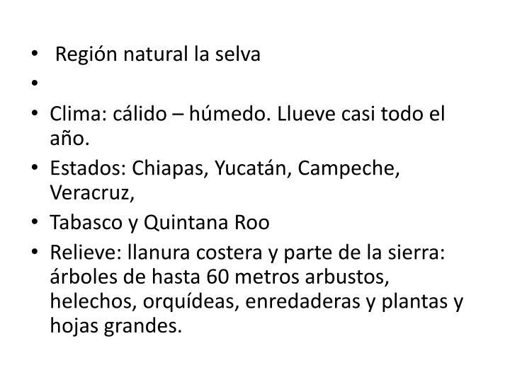 Región natural la selva