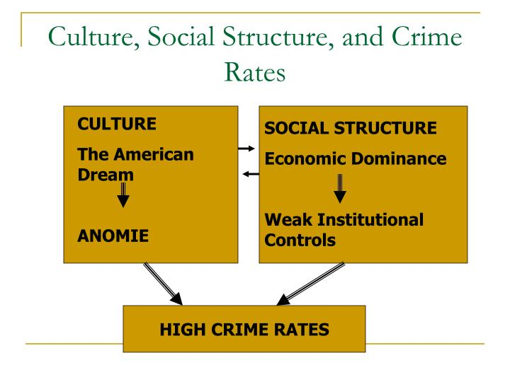Culture, Social Structure, and Crime Rates