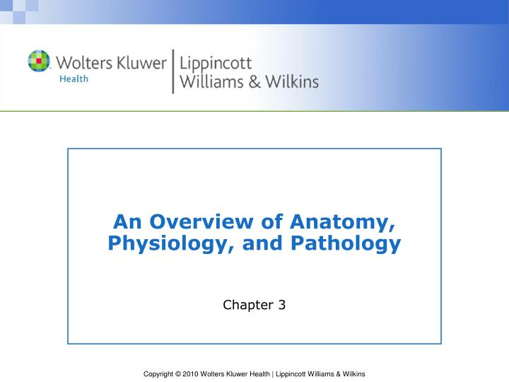 an overview of anatomy physiology and pathology n.