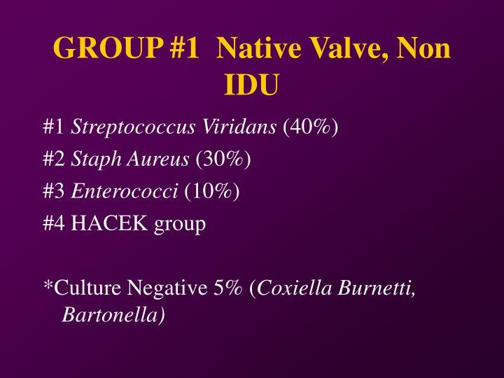 GROUP #1  Native Valve, Non IDU