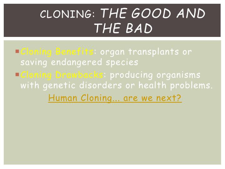is cloning good or bad