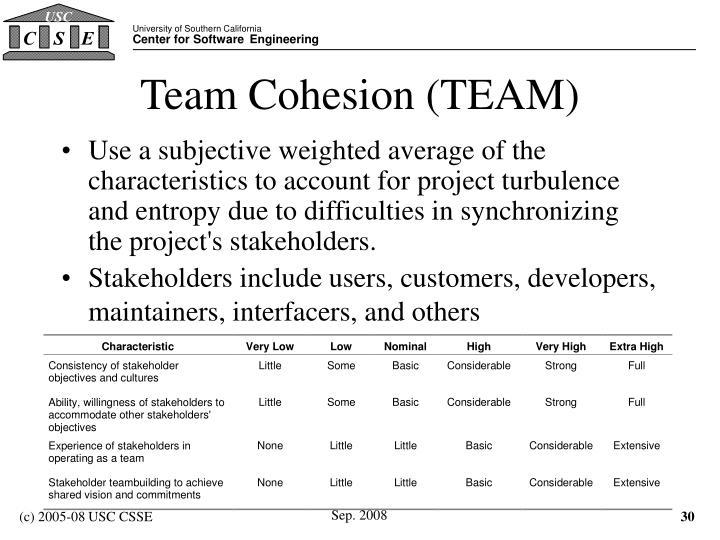 Team Cohesion (TEAM)