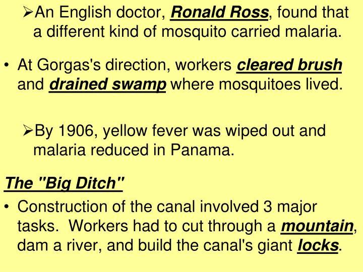 An English doctor,