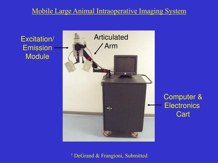 Mobile Large Animal Intraoperative Imaging System