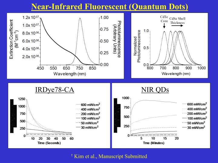 Near-Infrared Fluorescent (Quantum Dots)