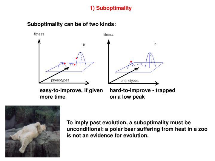 1) Suboptimality