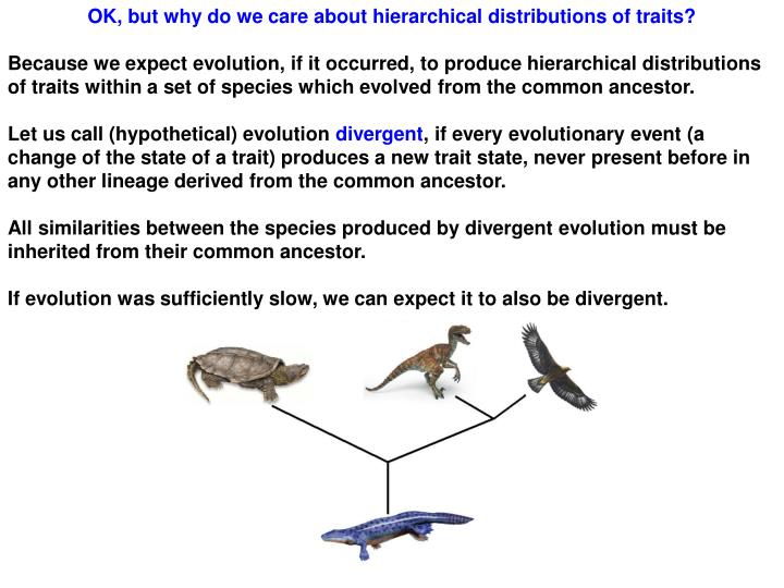 OK, but why do we care about hierarchical distributions of traits?