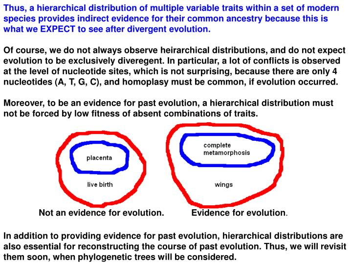 Thus, a hierarchical distribution of multiple variable traits within a set of modern species provides indirect evidence for their common ancestry because this is what we EXPECT to see after divergent evolution.