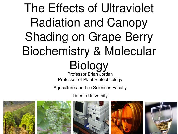 the affect of ultra violet radiation Biological effects of sunlight, ultraviolet radiation, visible light, infrared radiation and vitamin d for health.