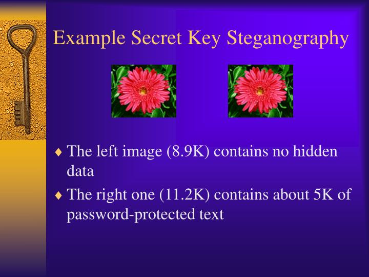 Example Secret Key Steganography