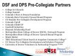 dsf and dps pre collegiate partners
