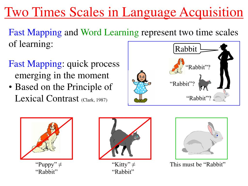 PPT - Real-Time Dynamics of Language Acquisition in Two-Year ...