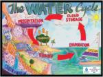 the water cycle3