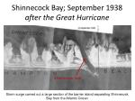 shinnecock bay september 1938 after the great hurricane