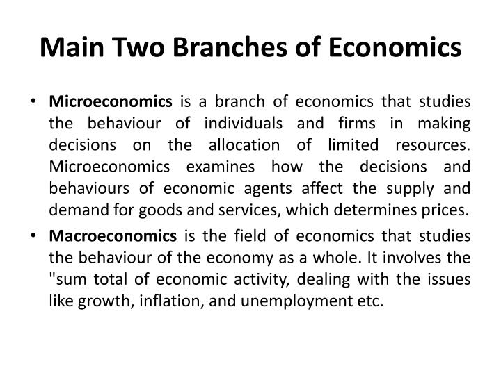 Main Two Branches of Economics