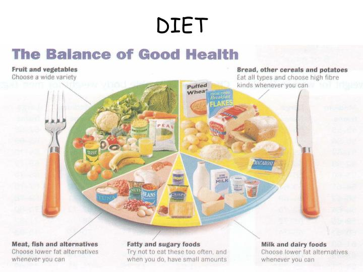the five main food groups of balanced diet essay Submit your essay for analysis  food outside the five main groups are considered  having a balanced diet according to the five main food groups will ensure you.