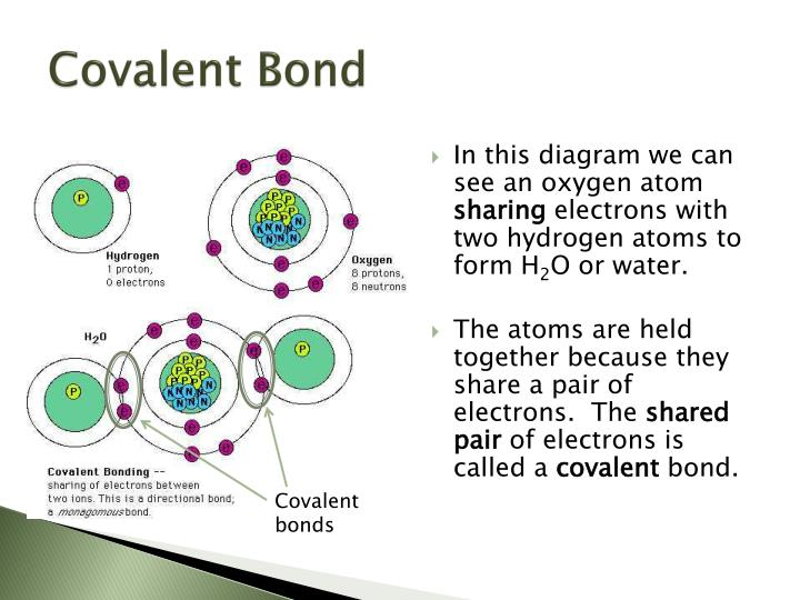 Ppt - Bonding Powerpoint Presentation