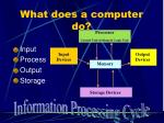 what does a computer do