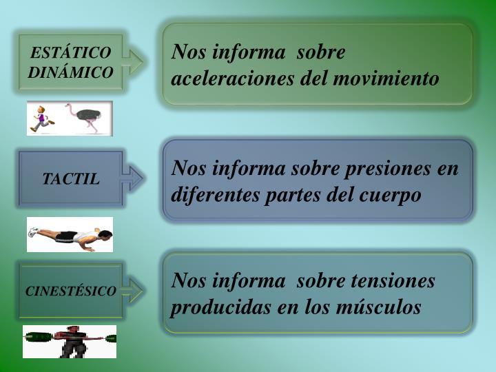 Nos informa  sobre aceleraciones del movimiento
