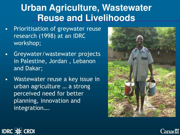Urban Agriculture, Wastewater Reuse and Livelihoods