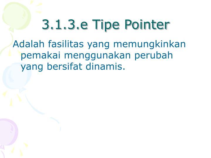 3.1.3.e Tipe Pointer