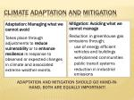 climate adaptation and mitigation