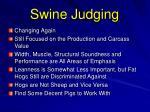 swine judging